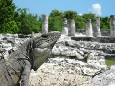 Encuentros mayas
