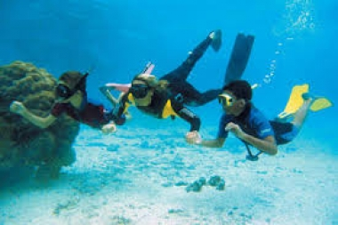 Playa Hopper  Tour de buceo