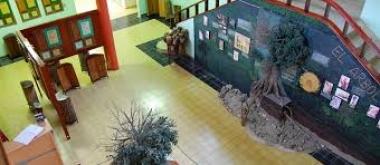 Museo Jardín Botánico Faustino Miranda