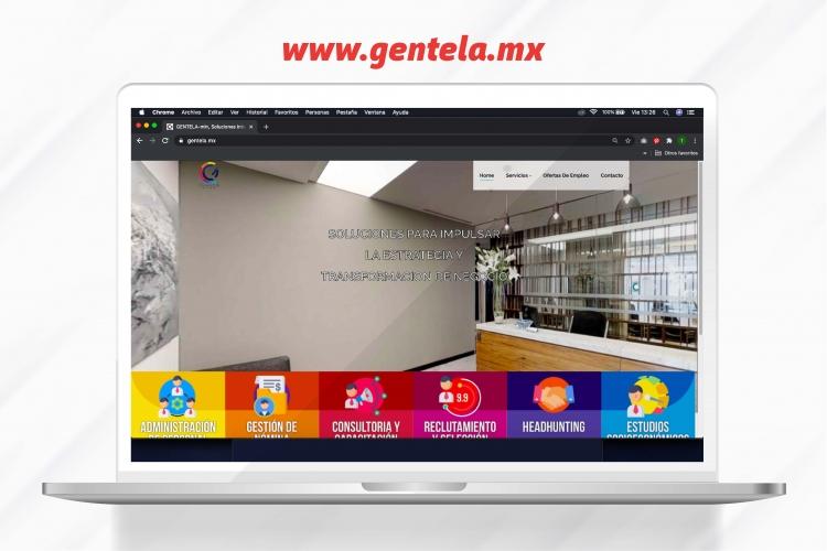 Portaforlio | Paginas Web Mexico | Carrito de compras