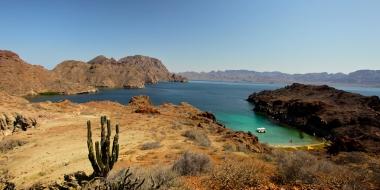 El Mar de Cortés… a pedacitos