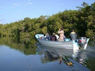 Vive la naturaleza en San Blas