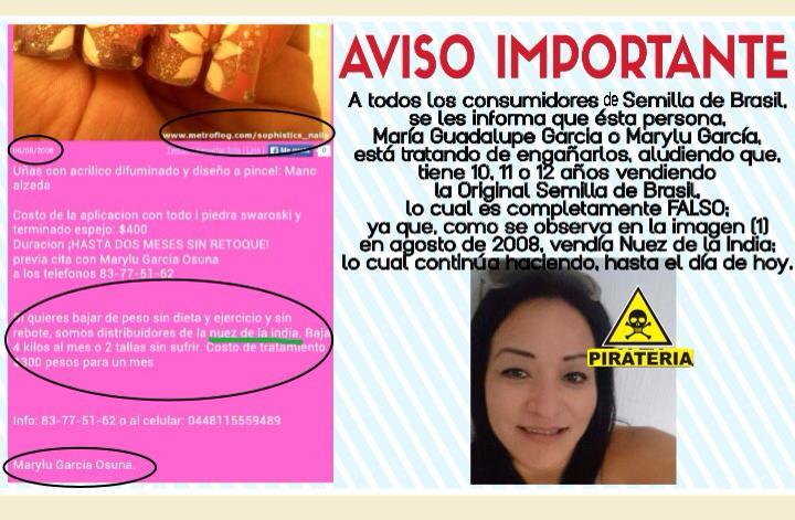 Semilla de brasil contacto ll manos o escr benos Semilla de brasil es toxica