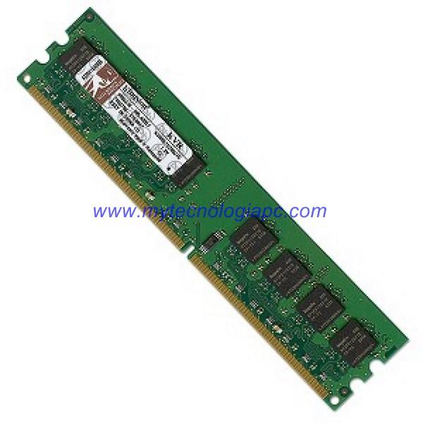 Memoria DIMM 1066 4 GB