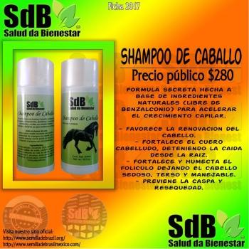 Semilla de brasil | Shampoo para caballo de uso humano