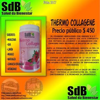 Semilla de brasil | THERMO COLLAGENE