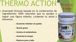 Semilla de brasil | THERMO ACTION