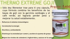 Semilla de brasil | THERMO EXTREME GOJI